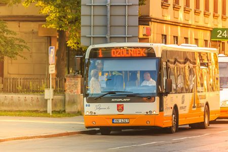 Jelgavas Autobusi 06